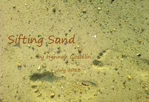 foot-prints-in-sand-3